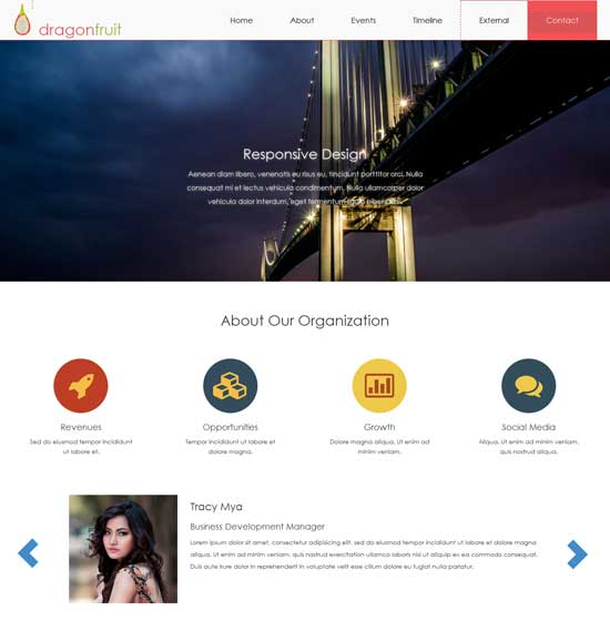 Dragonfruit-Free-HTML5-website-template
