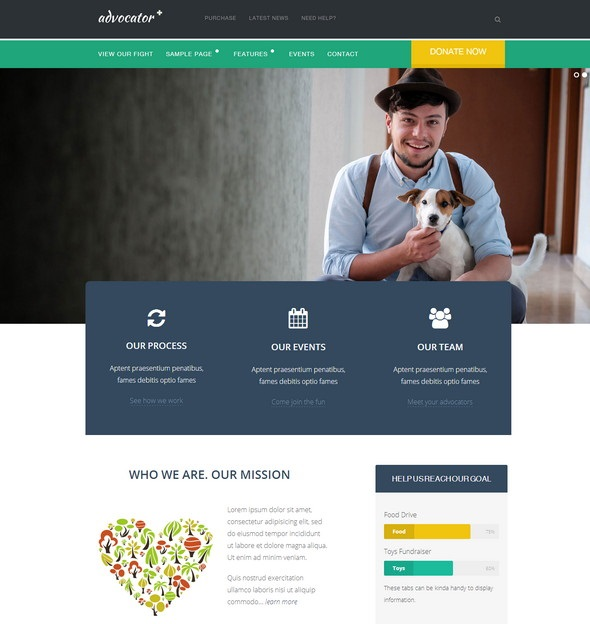 Advocator-Non-Profits-wordpress-theme