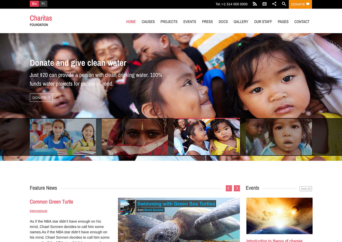 charitas-front-wordpress-theme