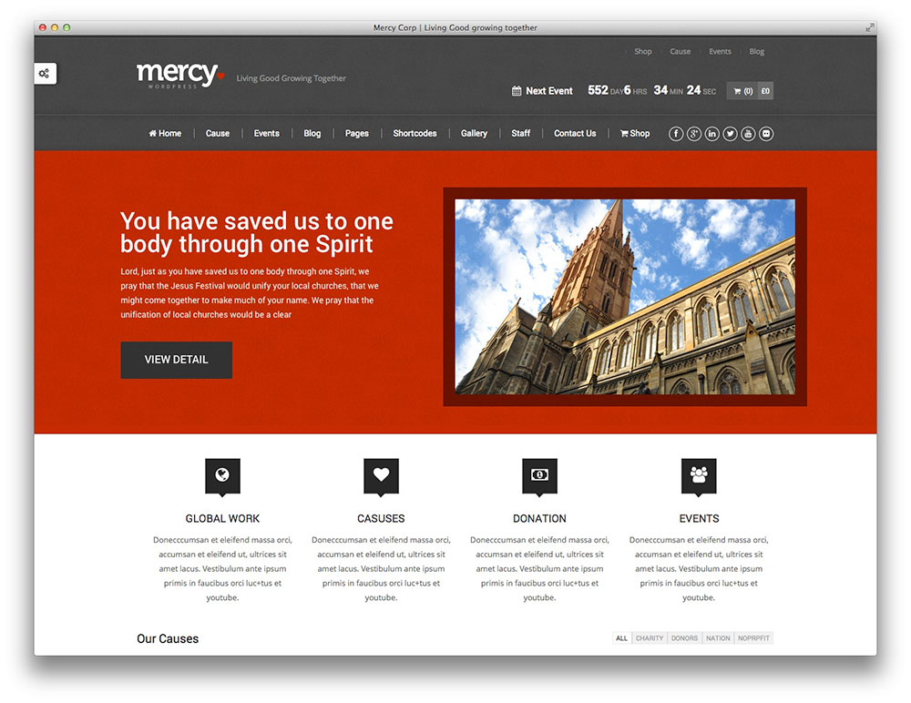 mercy-ngo-charity-theme