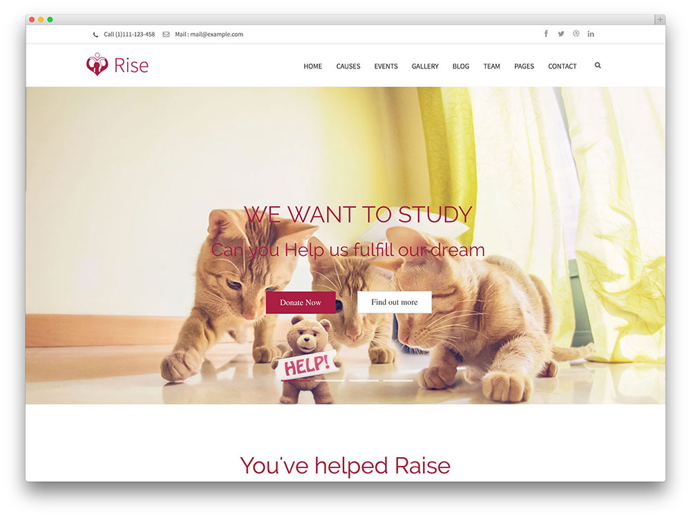 rise-non-profit-organizations-wordpress-theme