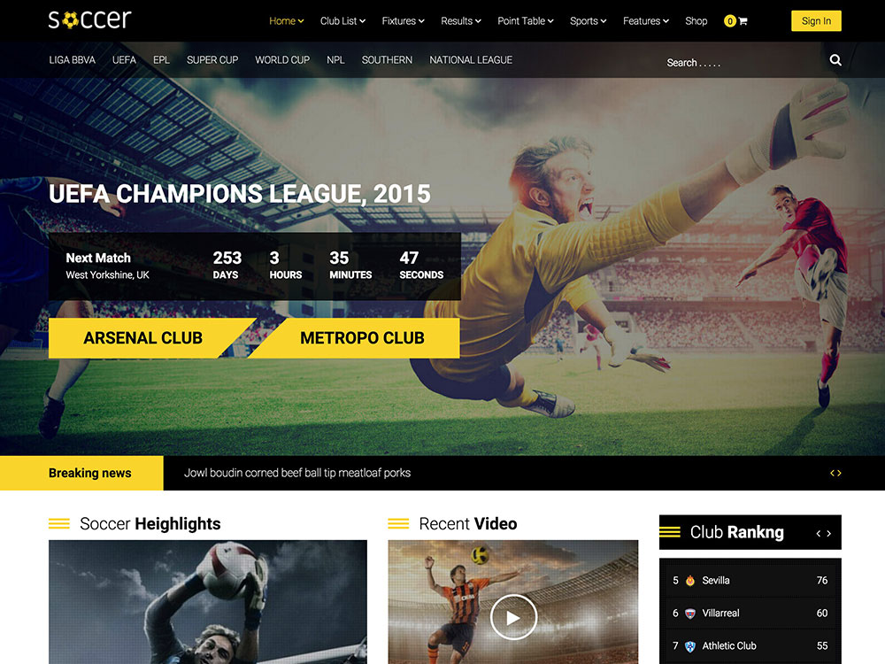 Wordpress Soccer theme fr