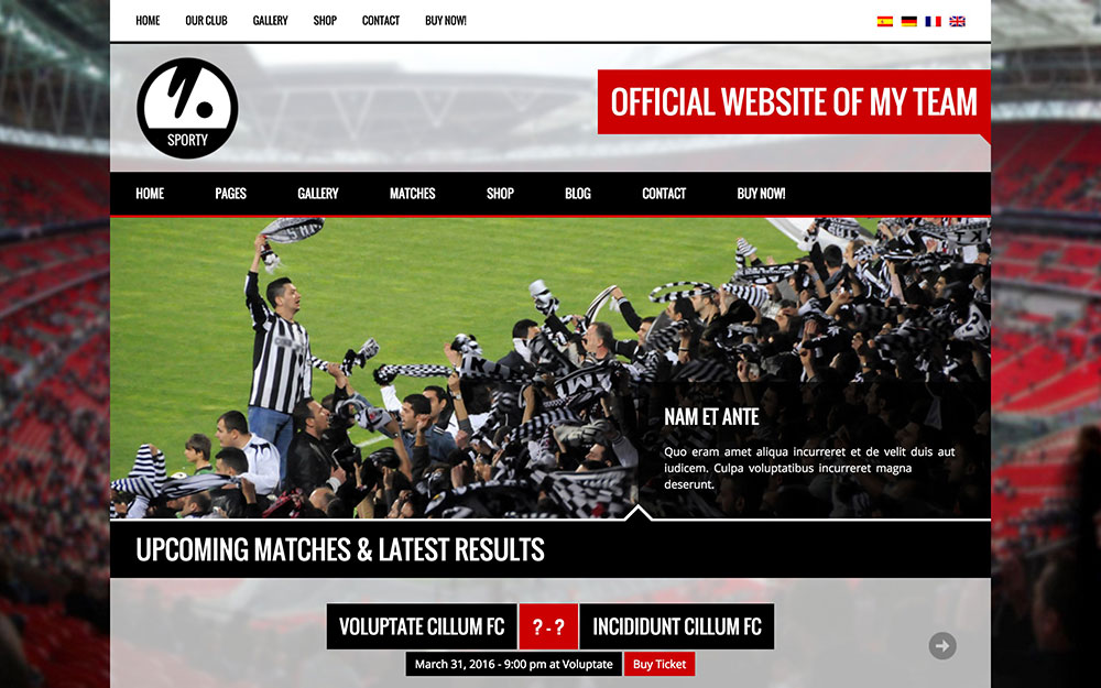 wordpress theme sports