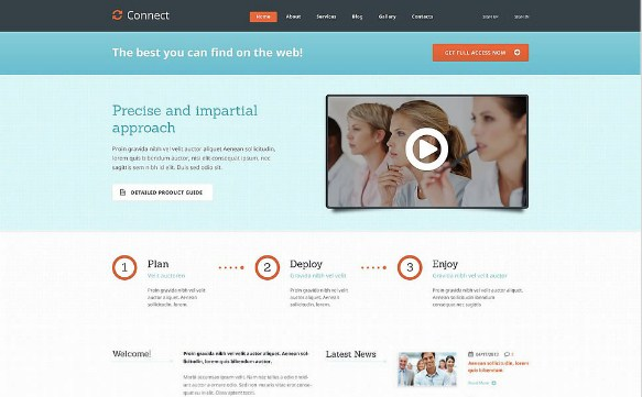 Light Management WordPress Theme