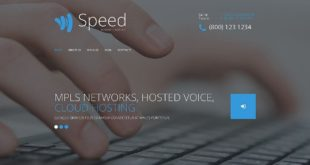 Wordpress Themes for IT Professionals