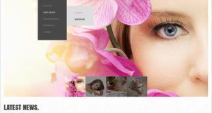 Salon Joomla Templates