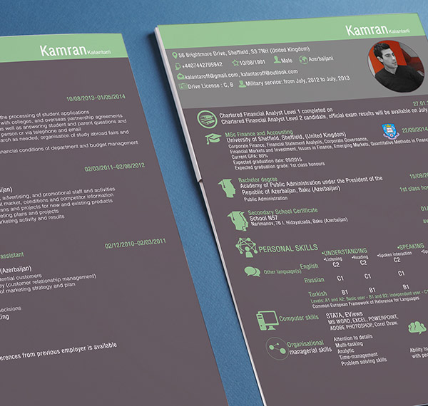 2Page Resume Indesign Resume Templates