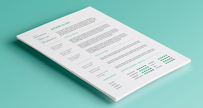 665 Indesign Resume Templates