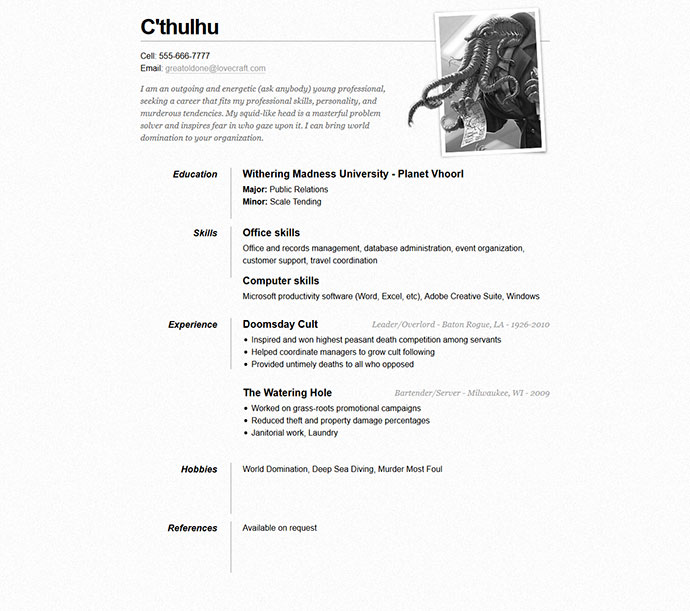 One Page Indesign Resume Templates 7