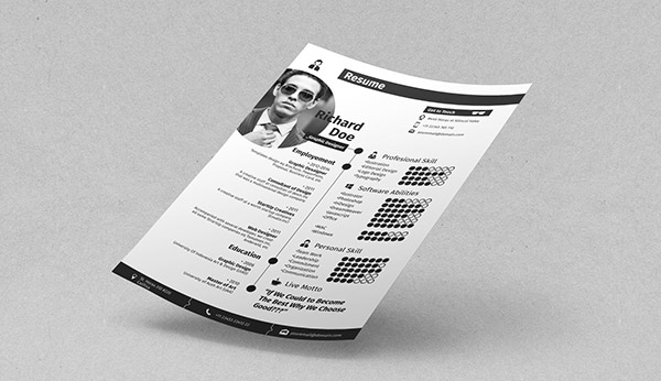 Profesional Indesign Resume Templates