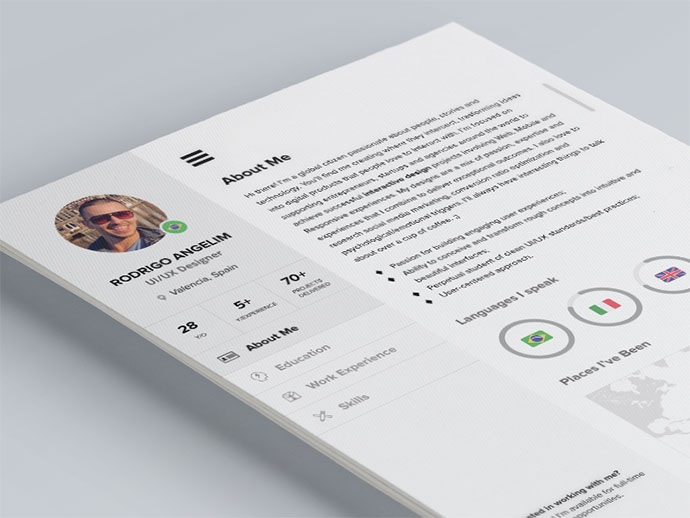 cool cv Indesign Resume Templates