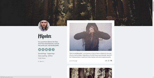 hipster free tumblr theme