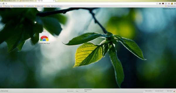 Leaves Chrome Theme