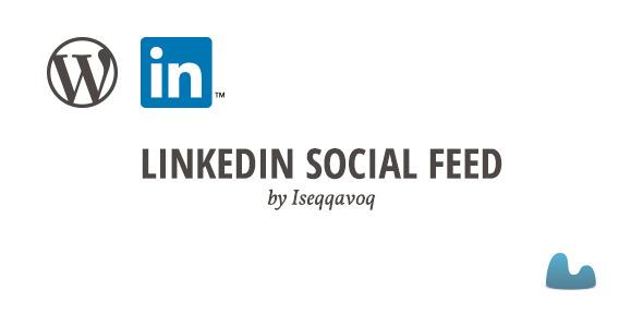 LinkedIn Social Media Plugins