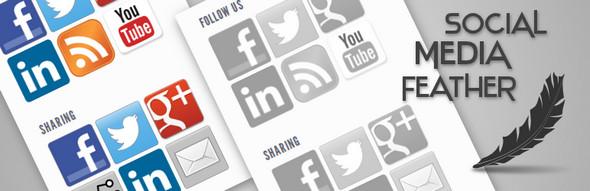 WP Social Media Plugins