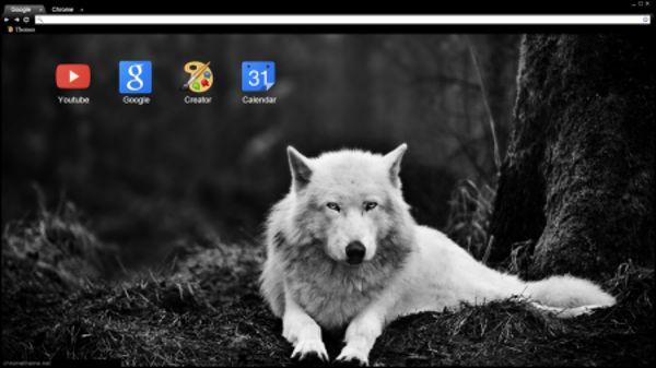 Wolf Kurt Chrome Theme