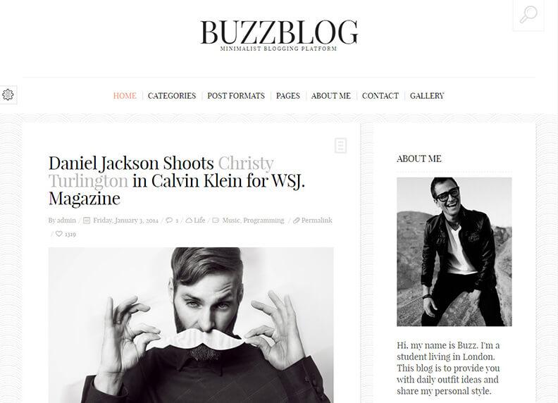 BuzzBlog Clean Personal Best Responsive Magazine