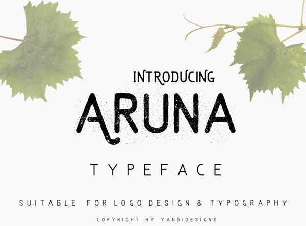 aruna 2017 for Graphic