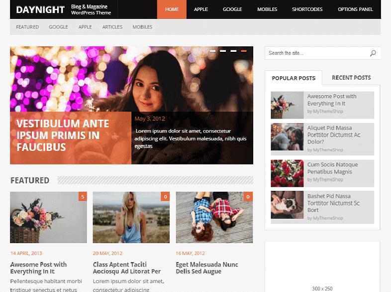 daynight Best Responsive Magazine WordPress Theme