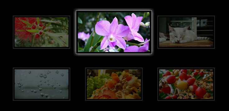 flower Effect With Pure