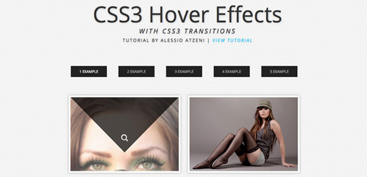 hover Effect With Pure